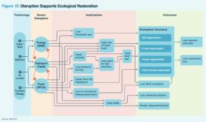 Ecological restoration flow diagram